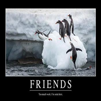 Friends Too Much Work Funny Demotivational Laminated Dry
