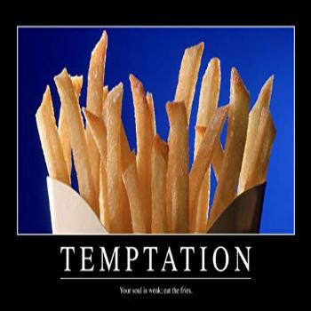 Temptation French Fries Funny Demotivational Cool Wall Decor